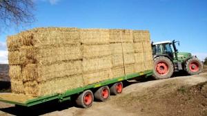 Plataformas agrícolas