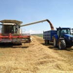 Remolque agrícola tándem de laterales cosechando con tractor New Holland