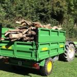 Remolque agricola de 1 eje transportando leña